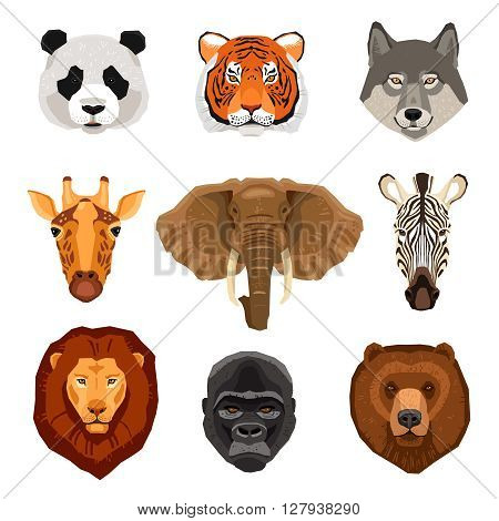 Images set of wild animals portraits drawn in flat style isolated vector illustration
