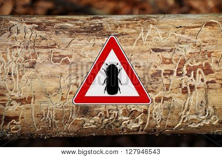 Colorful and crisp image of bark-beetle attention sign