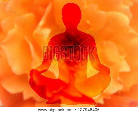 Blurry Flower Background With Woman Doing Yoga