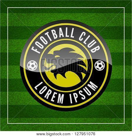 Football (soccer) Crest On Green Background