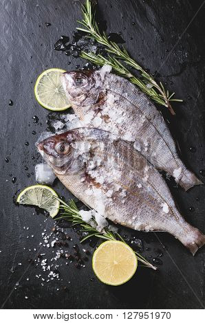 Tow Raw Fish With Rosemary Over Black