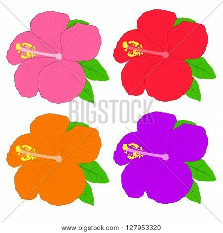 Hibiscus flower - easy to change colour. vector