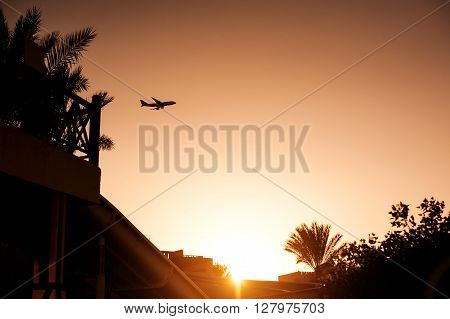 silhouette airplane above tropical resort in Egypt.