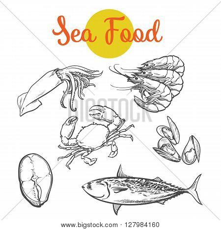 Set of marine products from the sea food, vector set sketch hand-drawn elements, sea fish, crab, shrimp, fish steak, Colmar, mussels isolated on white background food color selection of fresh sea food