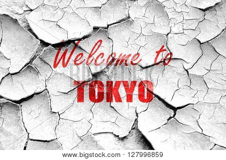 Grunge cracked Welcome to tokyo