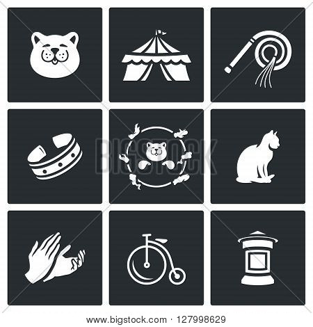 Cat, Circus, Training, Accessories, View, Jumping, Animal, Hands, icons .