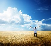 stock photo of fall-wheat  - happy young man rest on wheat field - JPG