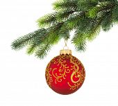 image of xmas tree  - Christmas tree branch with Christmas ball isolated on white - JPG