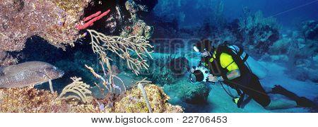 Underwater Photographer And Fish