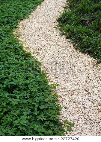 chaff path in the garden