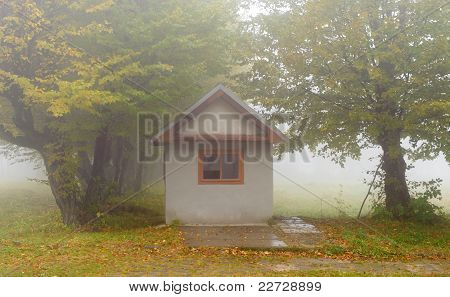 Small House In Foggy Forest