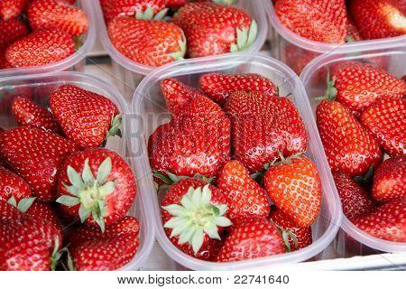 Erdbeeren zu verkaufen