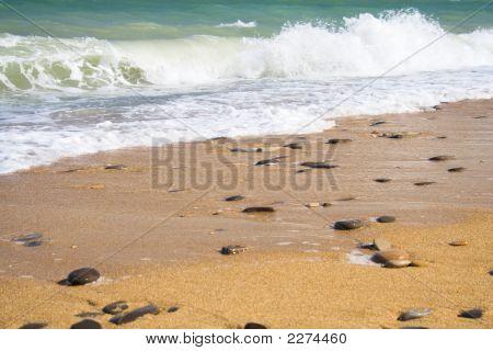 Golden Beach 2