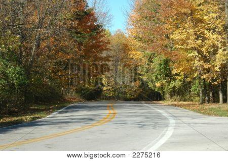 Fall Scene 5