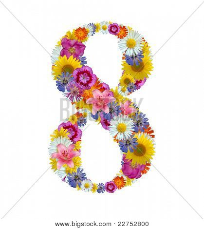 flower number isolated