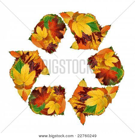 Recycling symbol of the autumn leaves