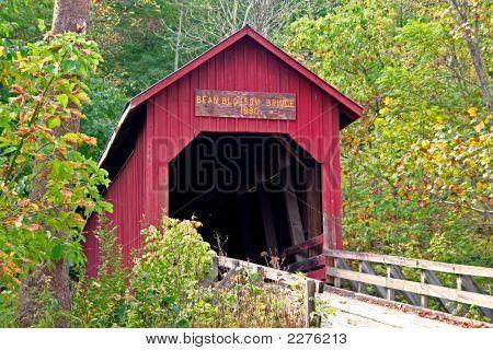 Bean Bridge 197