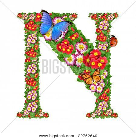 alphabet of primrose with butterfly and ladybug