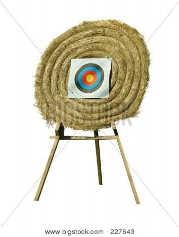 Shooting Wheel Target (isolated)