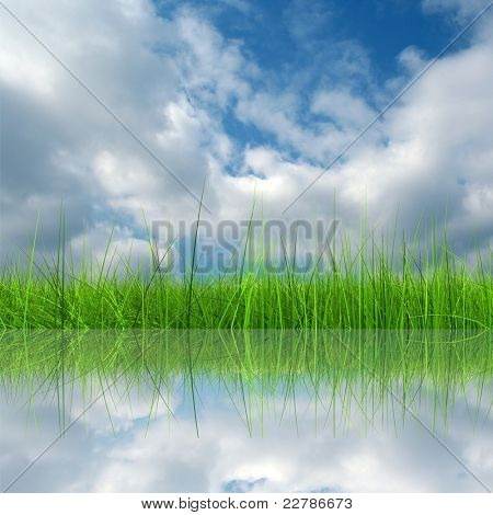 Green grass over a blue sky background and reflection in water
