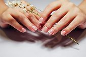 French Nail Extensions. Women At Beauty Parlour Doing Classic Manicure. poster