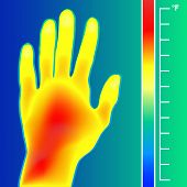 Thermal Imager Scan Human Hand Vector Illustration. Scale Is Degrees Fahrenheit. Actual Temperature  poster