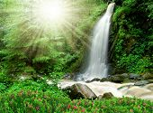stock photo of bohemia  - beautiful waterfall in the National Park Tercino valley in the mountains Novohradske - JPG