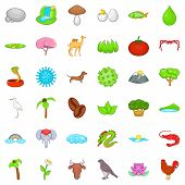 Natural Treasure Icons Set. Cartoon Set Of 36 Natural Treasure Vector Icons For Web Isolated On Whit poster