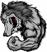 stock photo of growl  - Cartoon Image of a Wolf Mascot Growling and Flexing Arm - JPG