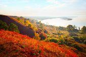 foto of kama  - Valley of Kama river  - JPG