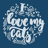 I Love My Cats - Hand Drawn Lettering Phrase For Animal Lovers On The Dark Blue Background. Fun Brus poster
