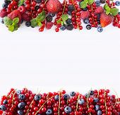 Red And Black-blue Fruits And Berries. Ripe Currants, Blueberries, Strawberries, Raspberries, Blackb poster