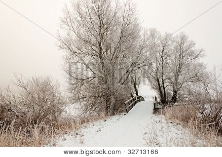 Dutch Winter Landscape With A Small Wooden Bridge In Morning Mist.