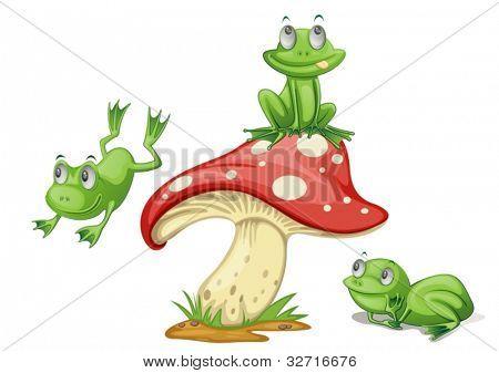 Illustration of 3 frogs on a mushroom