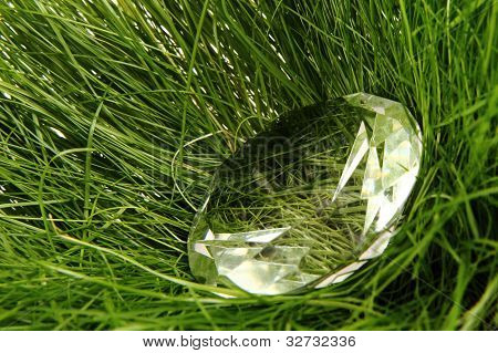 Diomand In The Grass