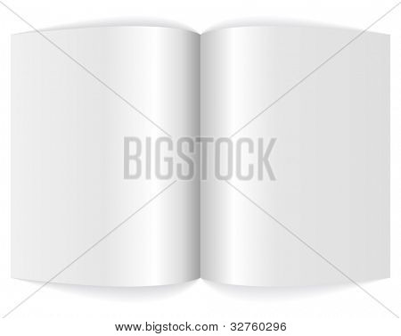 Spreadsheet of blank magazine vector illustration.