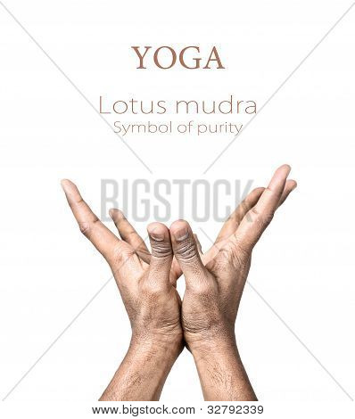 Yoga Lotus Mudra