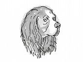 Retro Cartoon Style Drawing Of Head Of A Cavalier King Charles Spaniel, A Domestic Dog Or Canine Bre poster