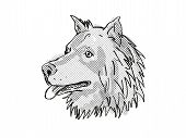 Retro Cartoon Style Drawing Of Head Of A Eurasier, Eurasian Spitz Or Wolf-chow, A Domestic Dog Or Ca poster