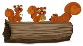 image of hollow log  - Illustraiton of squirrels on a log - JPG