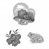 Vector Design Of Wild And Nature Logo. Set Of Wild And Bog Vector Icon For Stock. poster