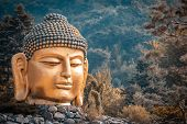 The Big Head Of Buddha Statue In Waujeongsa Temple Of South Korea, Landmark Of South Korea, Travel O poster