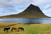 Kirkjufell Mountain in Iceland, Europe poster