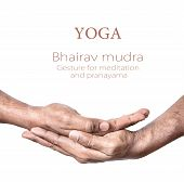 stock photo of mudra  - Hands in Bhairav mudra by Indian man isolated at white background - JPG
