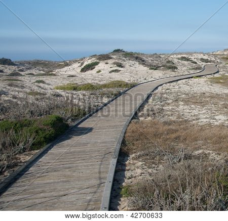 Empty boardwalk curves through a sandy beach