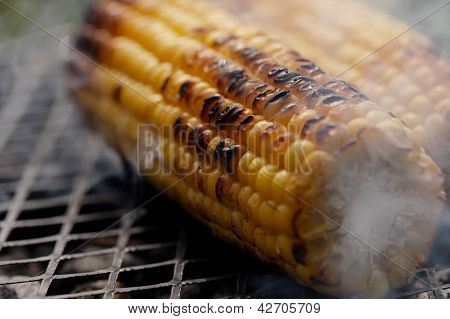 roasted sweet corns on the bbq grill