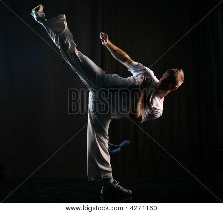 Martial Art High Kick