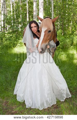 Young Woman In The Dress Of Fiancee Next To A Horse By A Canicular Day In A Birchwood