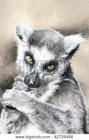 Illustration sketch of  lemur made with digital tablet