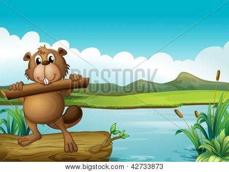 Beispiel für ein Biber oben schwimmende Stamm mit einem Stück Holz